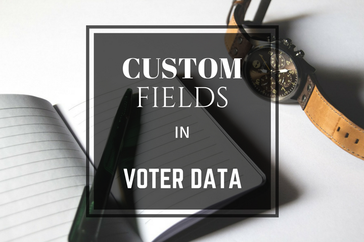 how to use custom fields in voter profiles