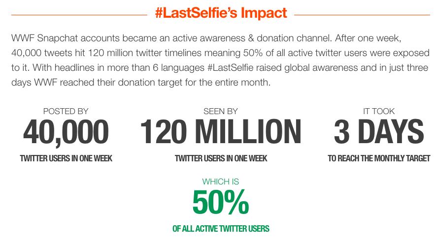lastselfie advocacy campaign example