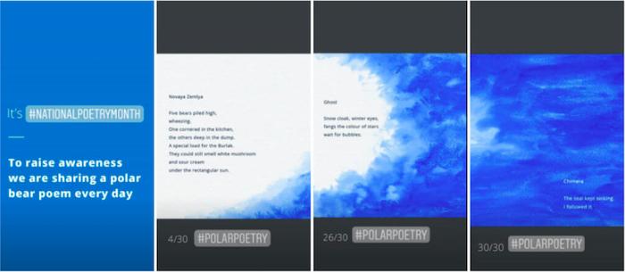 polar-bear-internation-national-poetry-day-story