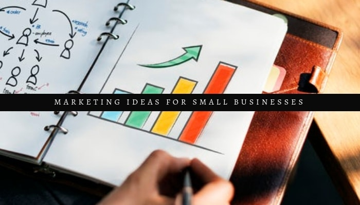10 Marketing Ideas For Small Businesses ( And Tips! )