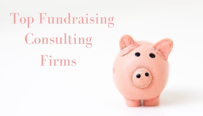 Top Fundraising Consulting Firms
