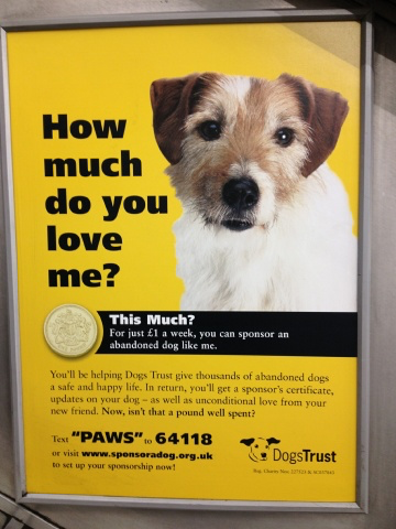 Dogs Trust campaign poster