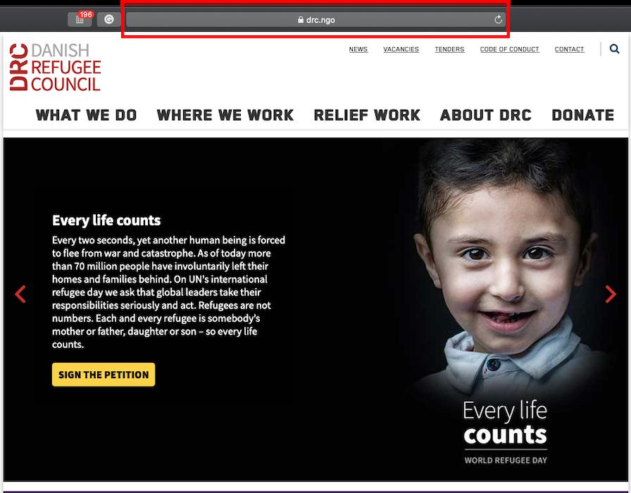 Nonprofit website domain example