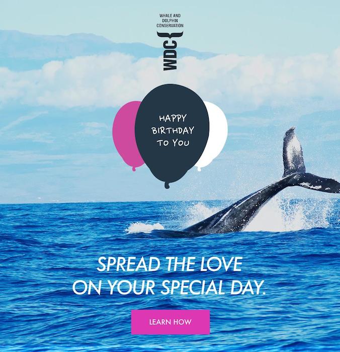 Birthday fundraising email