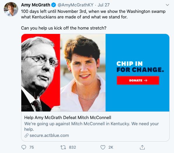 social media political campaign amy mcgrath