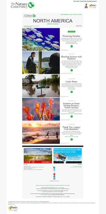 nonprofit-newsletter-example